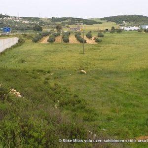 Söke Bodrum Yolu Akbük Kavşak Sahibinden Satılık Arazi