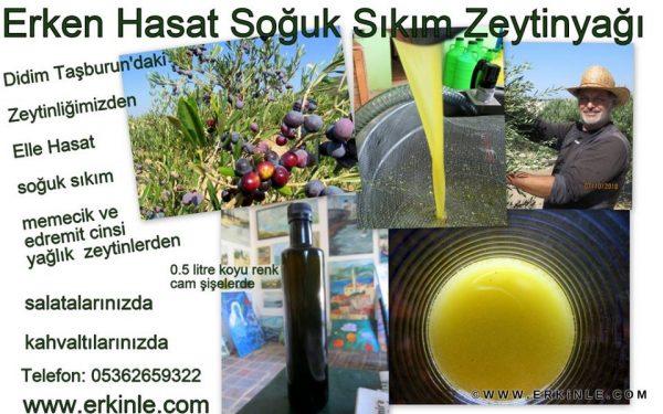 Cafe Olive Olive Oil Erken Hasat Soğuk Sıkım Zeytinyağı